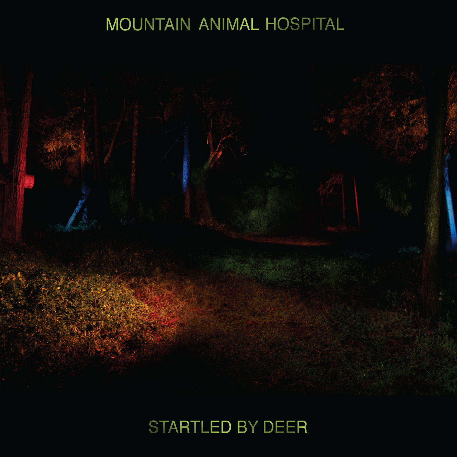 MOUNTAIN ANIMAL HOSPITAL